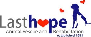 Last Hope Animal Shelt